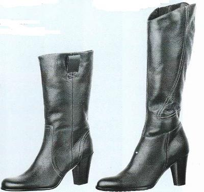 Click image for larger version  Name:Ladies boots cold resisting.jpg Views:101 Size:45.9 KB ID:460