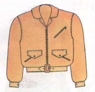 Name:  coat.jpg Views: 121 Size:  14.1 KB