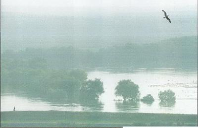 Click image for larger version  Name:floods.jpg Views:542 Size:37.2 KB ID:83
