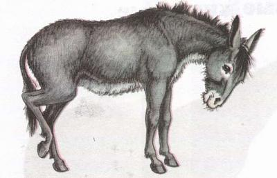 Click image for larger version  Name:donkey.jpg Views:119 Size:26.8 KB ID:165