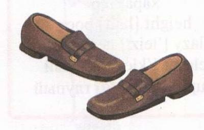 Click image for larger version  Name:shoes.jpg Views:123 Size:9.7 KB ID:385