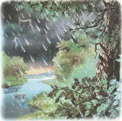Click image for larger version  Name:rain.jpg Views:100 Size:90.9 KB ID:152